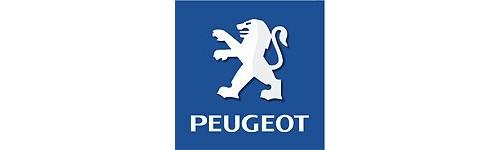 Módulos de vidros específicos Peugeot